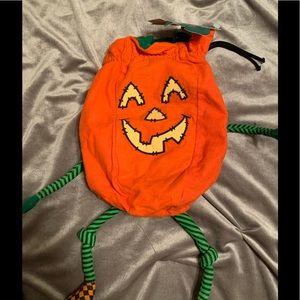 Hallmark drawstring pumpkin